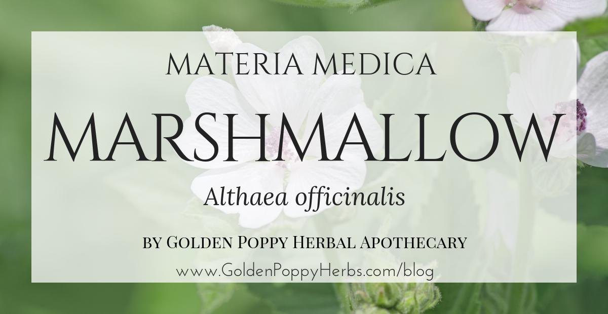Home - Golden Poppy